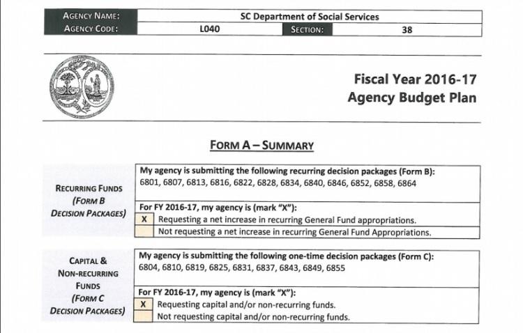 2016-17 dpt social service budget 4
