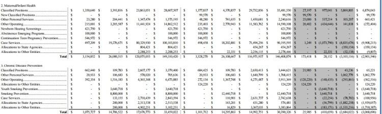 nikki-budget-proposal7